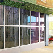 Fire Rated Glazing and Framing Systems